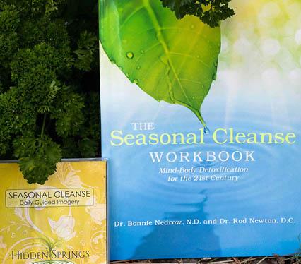 Seasonal Cleanse Workbook