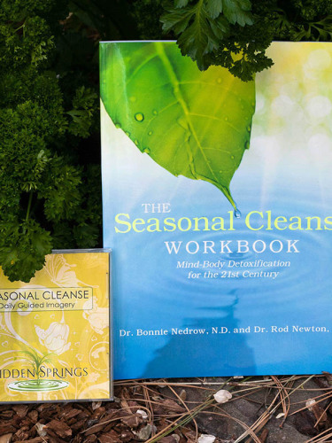 cleanse-book