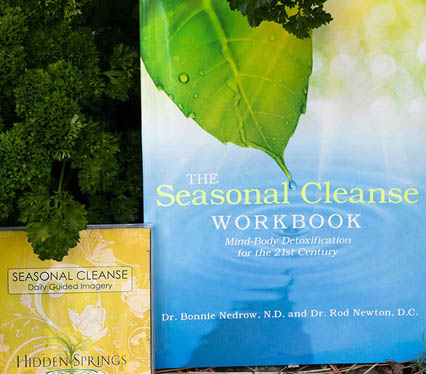 Seasonal Cleanse Workbook